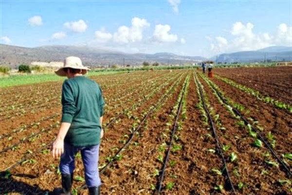 Προδημοσιεύθηκε το τελικό κείμενο για το Μέτρο των Νέων Αγροτών